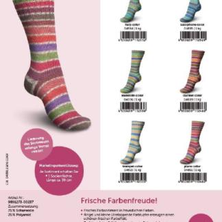 Schachenmayr Regia - Etude Color